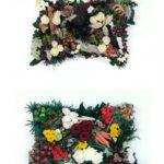 Non-religious funerals in Waterloo